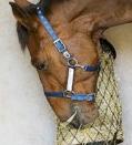 Zubehör für´s Pferd